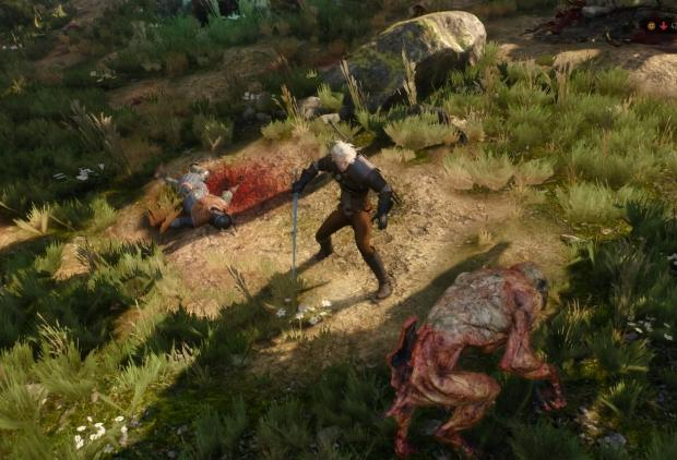the_witcher_3_wild_hunt_5